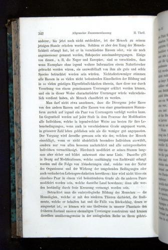 Image of Darwin-F1065.2-1871-342