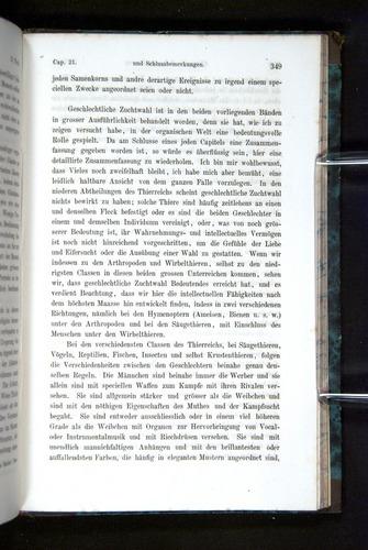 Image of Darwin-F1065.2-1871-349