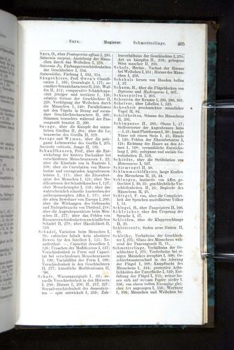 Image of Darwin-F1065.2-1871-405
