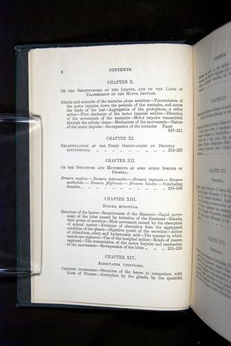 Image of Darwin-F1225-1888-000-z10