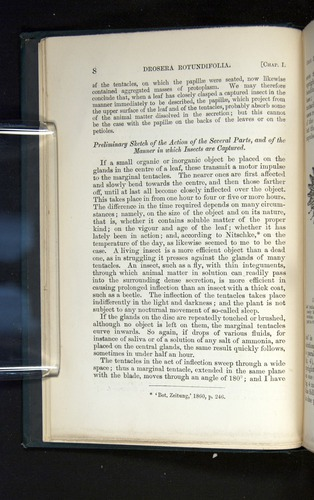 Image of Darwin-F1225-1888-008