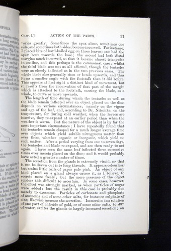 Image of Darwin-F1225-1888-011