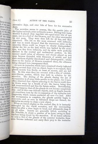 Image of Darwin-F1225-1888-013