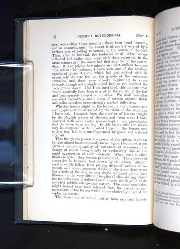 Image of Darwin-F1225-1888-014