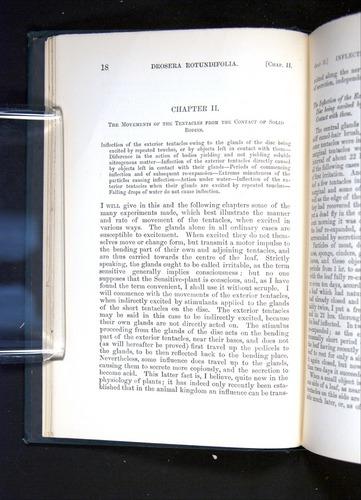 Image of Darwin-F1225-1888-018