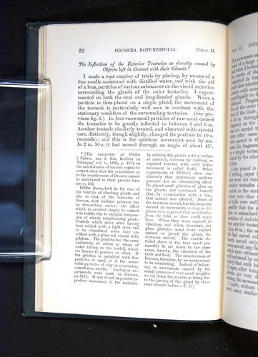 Image of Darwin-F1225-1888-022