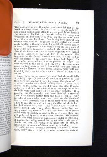Image of Darwin-F1225-1888-023