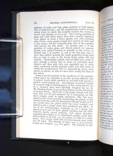 Image of Darwin-F1225-1888-024