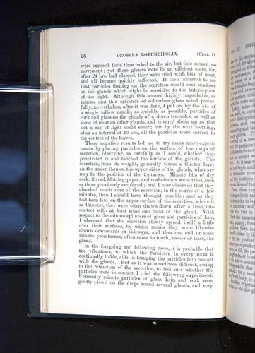 Image of Darwin-F1225-1888-026