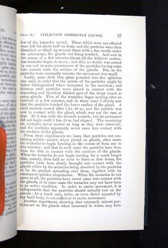 Image of Darwin-F1225-1888-027