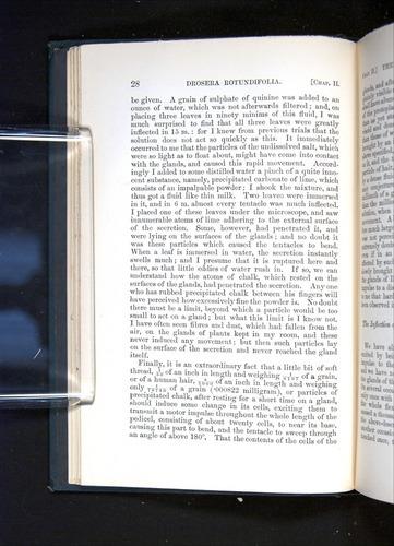 Image of Darwin-F1225-1888-028