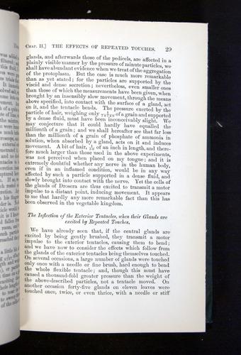 Image of Darwin-F1225-1888-029