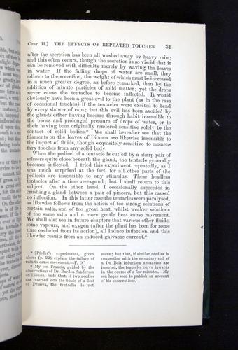 Image of Darwin-F1225-1888-031