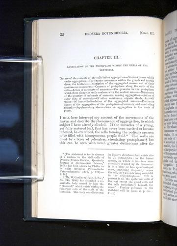 Image of Darwin-F1225-1888-032