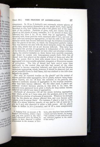 Image of Darwin-F1225-1888-037