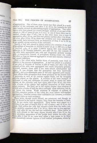 Image of Darwin-F1225-1888-043