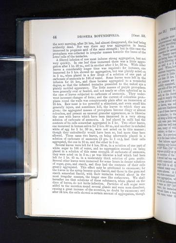 Image of Darwin-F1225-1888-044