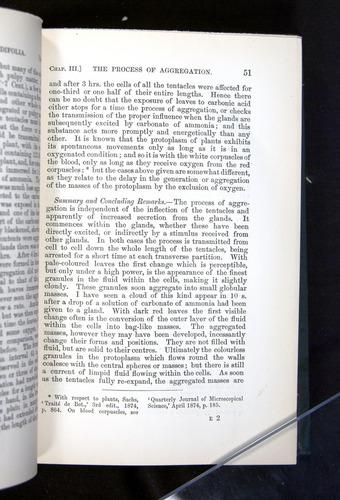 Image of Darwin-F1225-1888-051