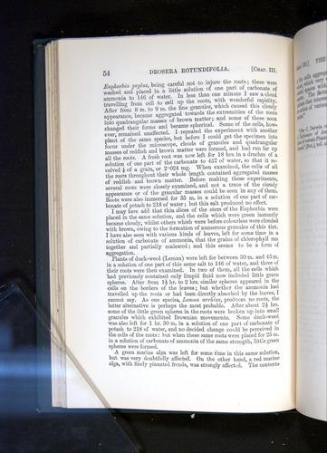 Image of Darwin-F1225-1888-054