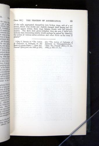 Image of Darwin-F1225-1888-055