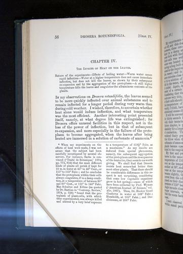 Image of Darwin-F1225-1888-056