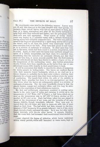 Image of Darwin-F1225-1888-057