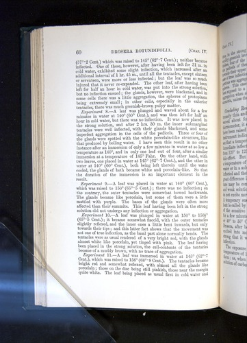 Image of Darwin-F1225-1888-060