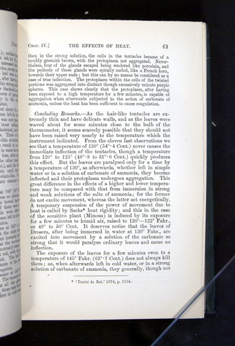 Image of Darwin-F1225-1888-061