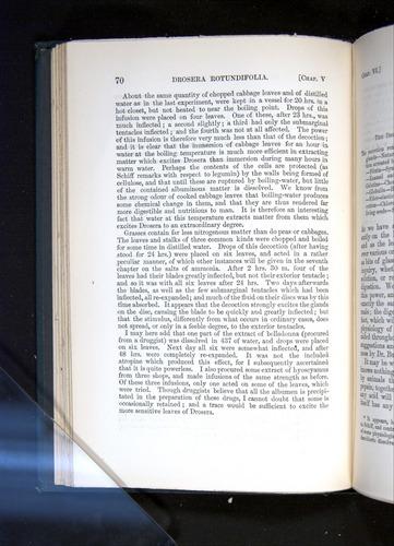 Image of Darwin-F1225-1888-070