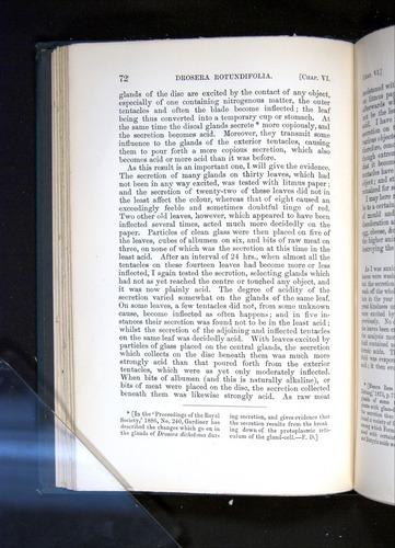 Image of Darwin-F1225-1888-072