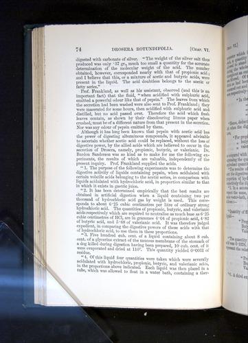 Image of Darwin-F1225-1888-074