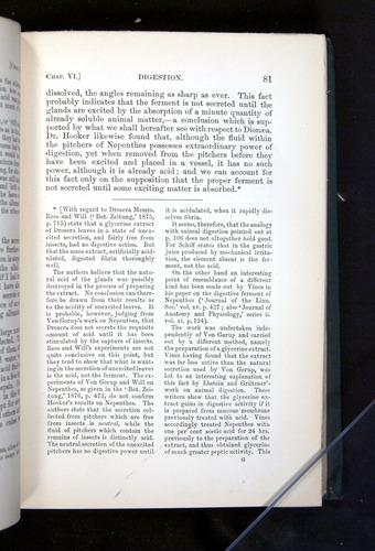 Image of Darwin-F1225-1888-081
