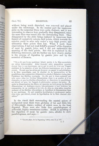 Image of Darwin-F1225-1888-083