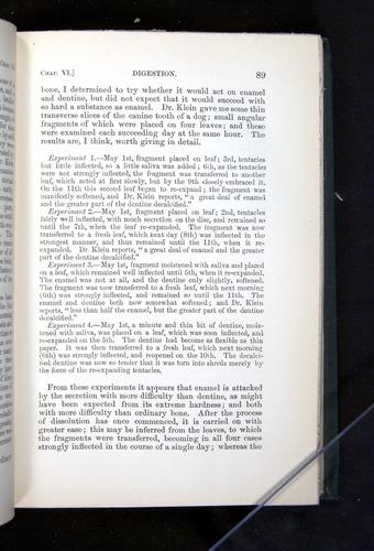 Image of Darwin-F1225-1888-089