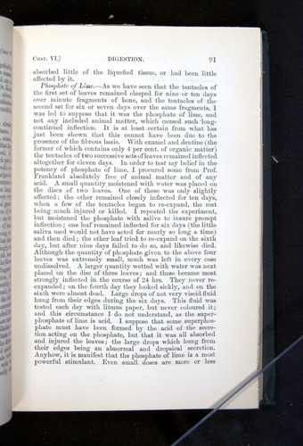 Image of Darwin-F1225-1888-091