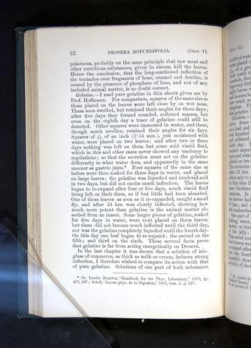 Image of Darwin-F1225-1888-092