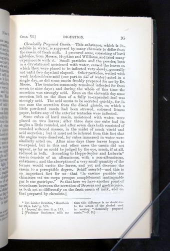 Image of Darwin-F1225-1888-095
