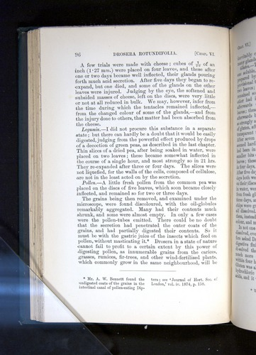 Image of Darwin-F1225-1888-096