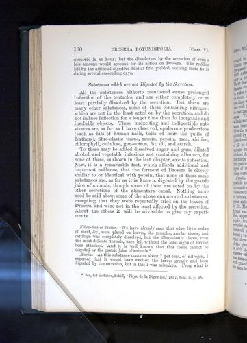 Image of Darwin-F1225-1888-100