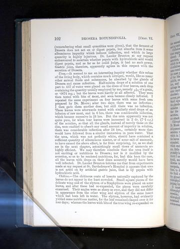 Image of Darwin-F1225-1888-102