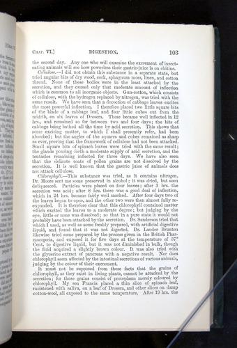 Image of Darwin-F1225-1888-103