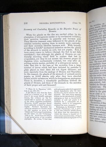 Image of Darwin-F1225-1888-106