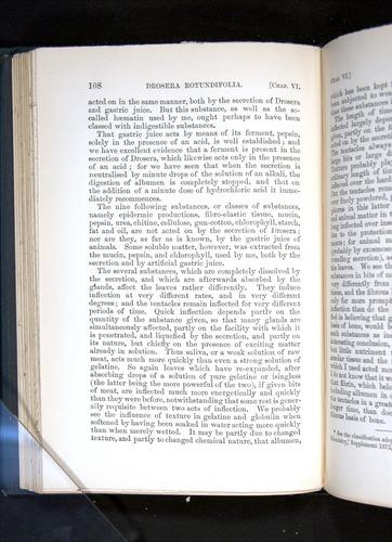 Image of Darwin-F1225-1888-108