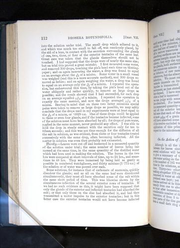 Image of Darwin-F1225-1888-112