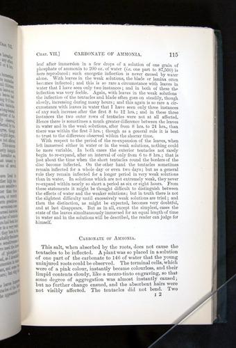 Image of Darwin-F1225-1888-115