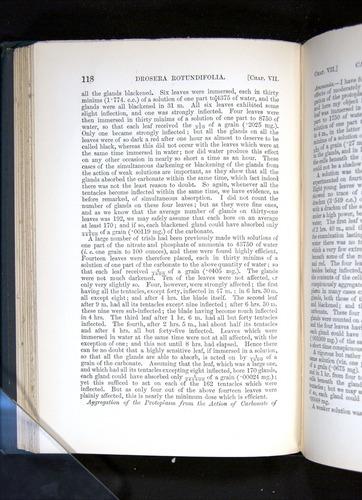 Image of Darwin-F1225-1888-118