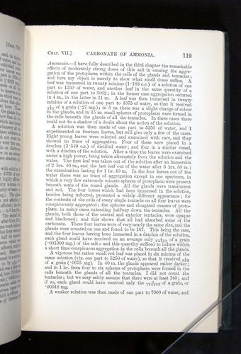 Image of Darwin-F1225-1888-119