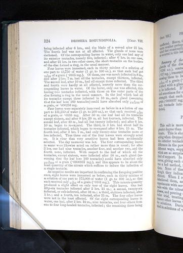 Image of Darwin-F1225-1888-124