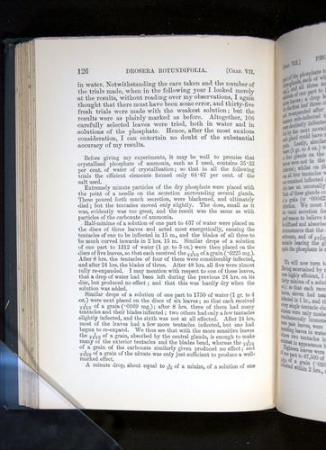 Image of Darwin-F1225-1888-126