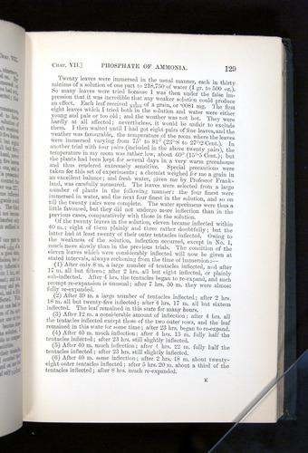 Image of Darwin-F1225-1888-129